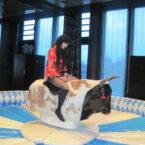 Bayern Bull Riding mieten