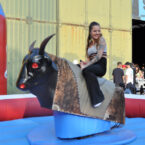 Bull Riding Verleih