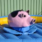 Schweinerodeo mieten