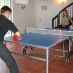 Tischtennis Platten Mieten
