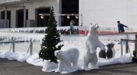 Winterwelt Dekoration mieten