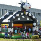 Hüpfburg Kuh mieten
