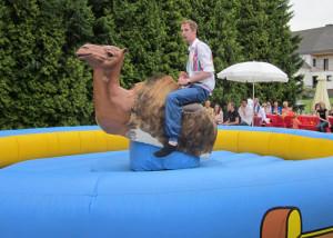 kamel rodeoreiten - bullriding verleih