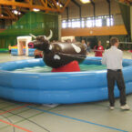 Pull Riding Rodeo mieten