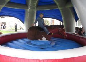 Pferde Rodeo Verleih