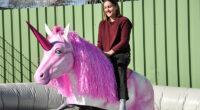 Einhornreiten Rodeo mieten
