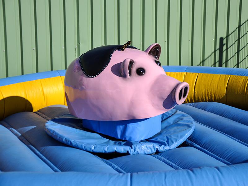 Schweinchen Rodeo mieten