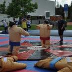 Sumo_Wrestling_mieten