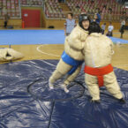 Sumoringer Wrestling mieten