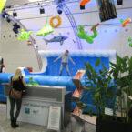 surf simulator rodeoanlage